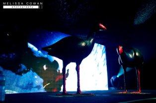Bear Grylls Tour 2011